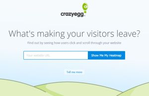 crazyegg-heatmap-analytics-wordpress-plugin-service